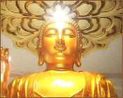 Buddhist Hubris